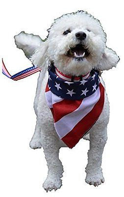 Patriotic dog bundle Collar Leash and Bandana (Great for July 4th!)
