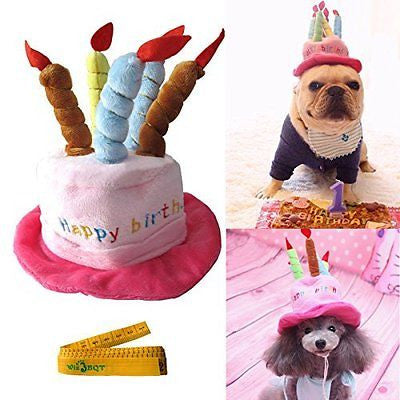 Cute Adorable Cat Dog Pet Happy Birthday Party Hat with Cake and 5 Colorful