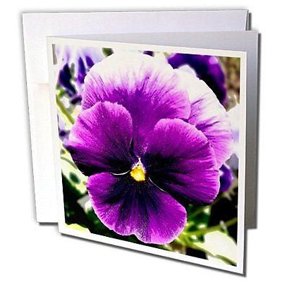 Dawn Gagnon Photography Digital Floral Art - Giant Purple Pansy