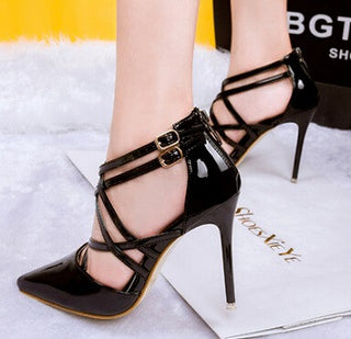 Pointed Toe Thin High Heel Shoe