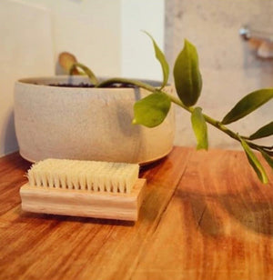 BODY | Natural Tampico Nail Brush (Biodegradable) - KISS Skin Care | Australia, Body Brushes, by Eco-Max
