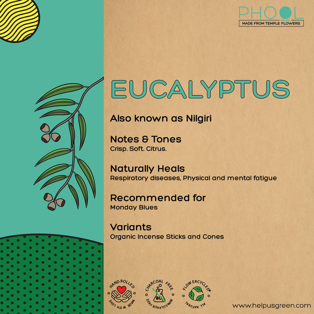 Phool Eucalyptus Incense Cones
