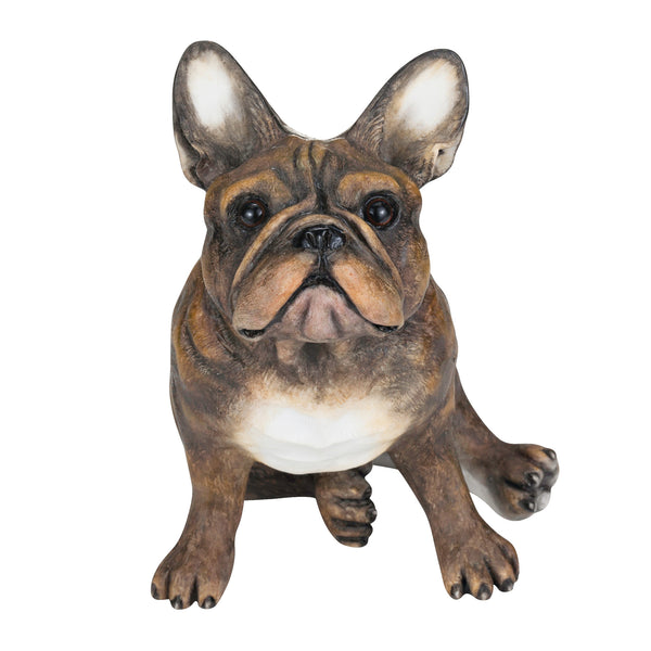 French Bulldog Brindle