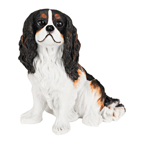 King Charles Cavalier Spaniel Tri Color