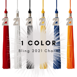 1 Color 2021 Bling Charm