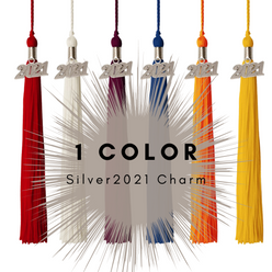 1 Color 2021 Silver Charm