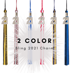 2 Color 2021 Bling Charm