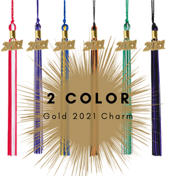 Class Act Graduation Adult Multi-Color Graduation Tassel with 2021 Gold Charm