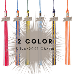 2 Color 2021 Silver Charm