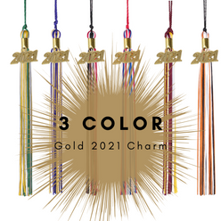 3 Color 2021 Gold Charm