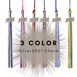 3 Color 2021 Silver Charm