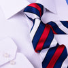 "French Flag Style 3"" Necktie Business Elegance  For Formal Business Occasion"