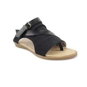 Barria - Black Rancher Canvas