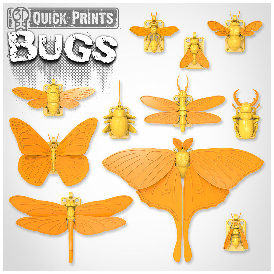 photograph about Printable Bugs referred to as Insects Established
