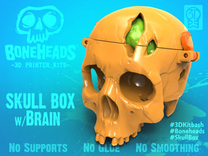SkullBox w/ Brain