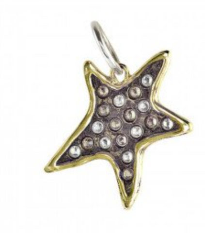 Theory of Light Pendant - Persisting Star