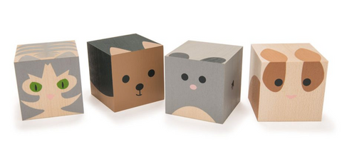Cubes Animaux familiers