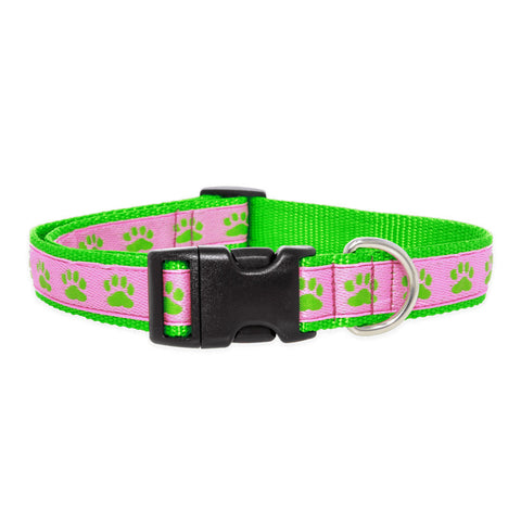 Paws For A Cause Dog Collar Pink Green