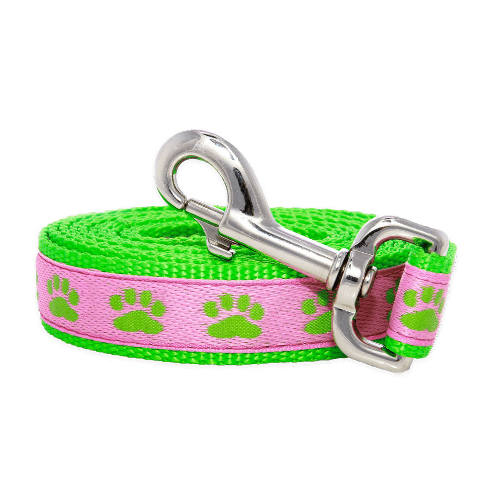 Paws For A Cause Pink Green Dog Leash Lead