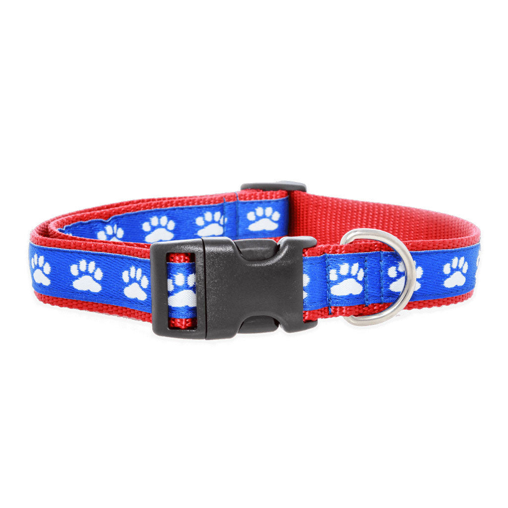 Paws For A Cause Dog Collar Red White Blue