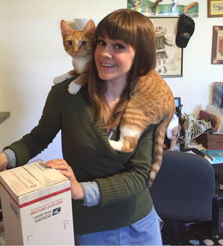 Shipping and packing post office with Orange Ginger Tabby Cat Online Retail Cats Lover Store