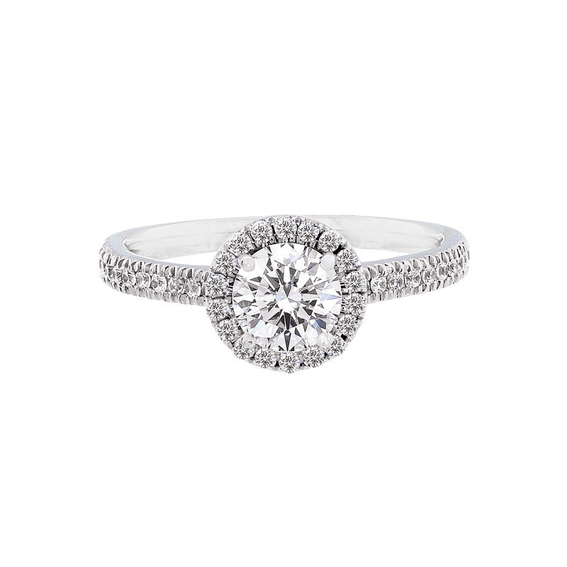 diamond engagement solitaire lucina gia siz round ring claw