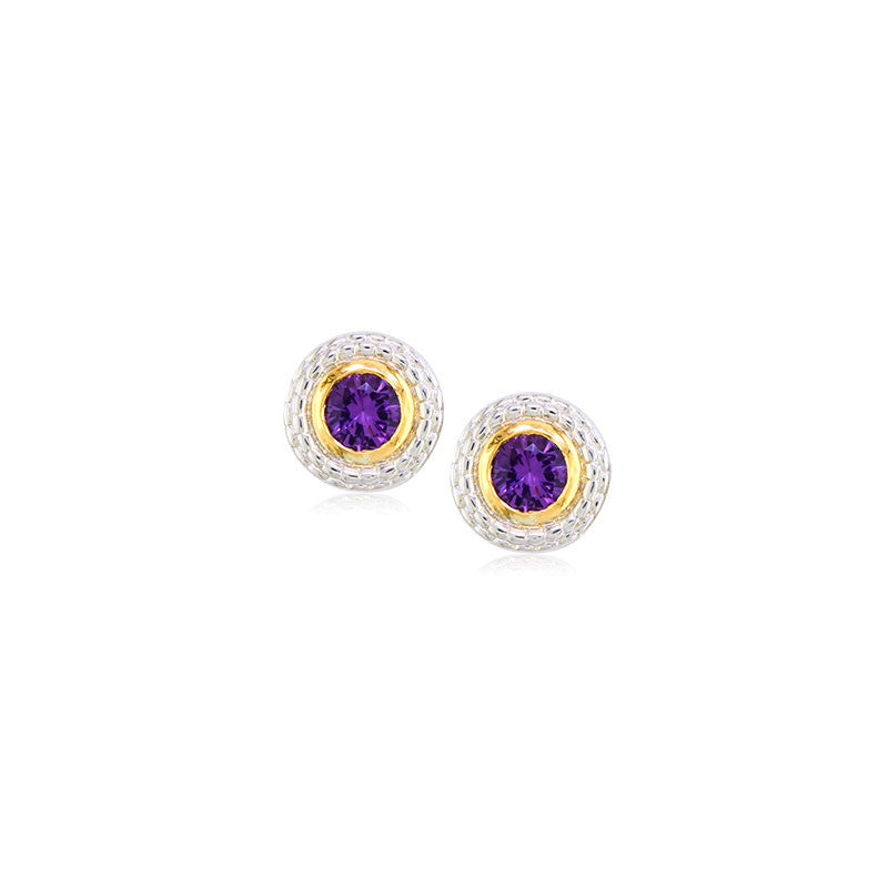 Pietra Collection Amethyst Two-Tone Circle Earring