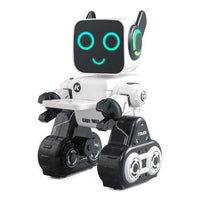 Cady Wile Educational Robot