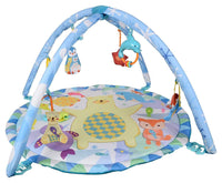 Polar Fiesta Play Gym