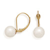 7.5-8mm Cultured Akoya Pearl with Gold Lever Back Earrings