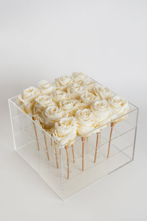 Acrylic box square 16 Roses