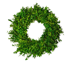Designer Wreath Boxwood 24""