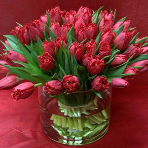 100 premium tulips in a glass vase