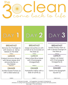 3 Day Vegan Meal Plan (Schedule)