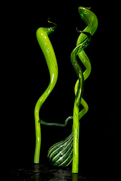 Dale Chihuly Mille Fiori IV Green Installation Original Handblown Glass Contemporary Art Sculpture