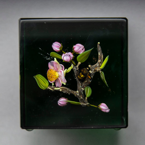 Glass Paperweight Fine Art Green Apple Blossom with honey Bee Signed