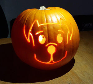 What to do with your Halloween Pumpkin