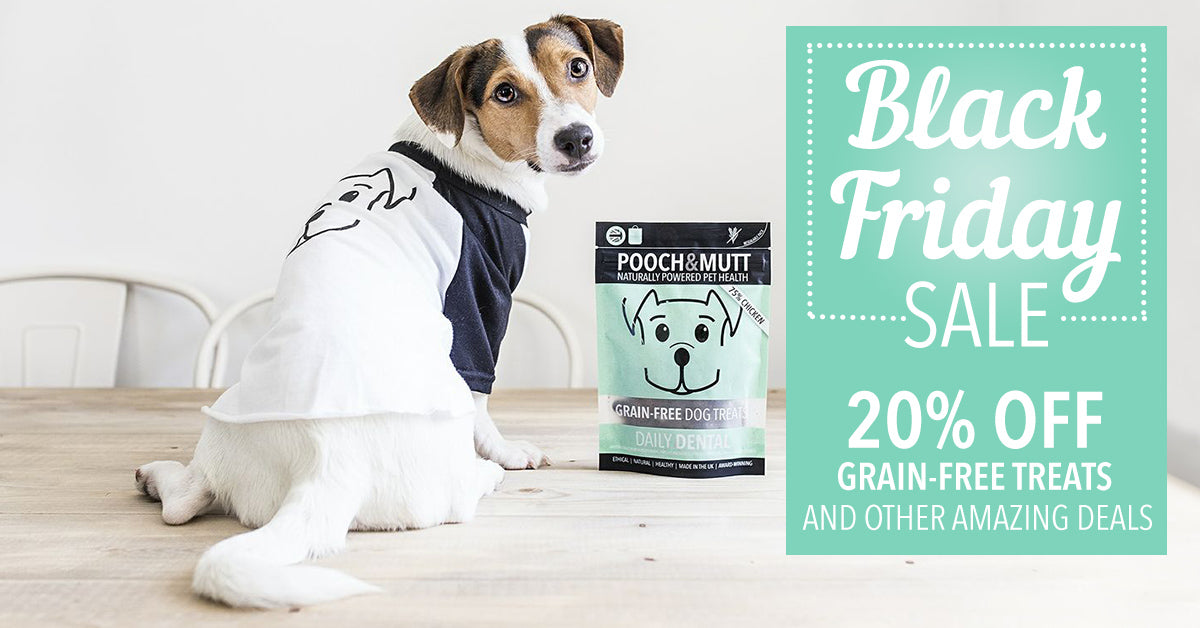20% off grain-free treats
