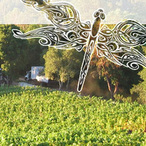 Odonata Wines Tasting Event at Annieglass Watsonville