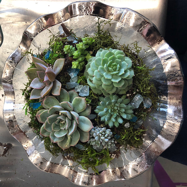 Annieglass Succulent Arrangement Workshop (TBD)