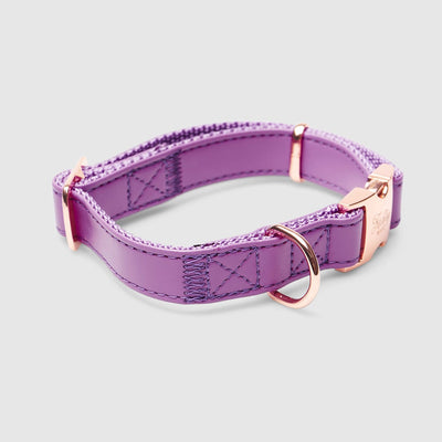 Fetching Ware Aurora Violet Collars