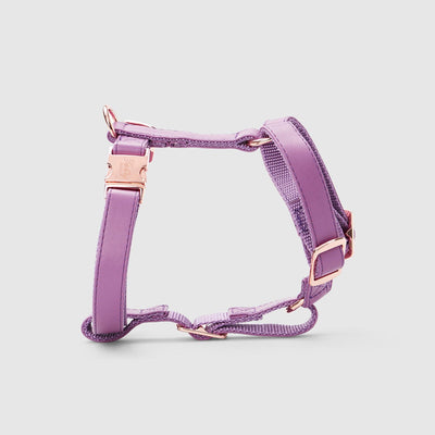 Fetching Ware Aurora Violet Harness