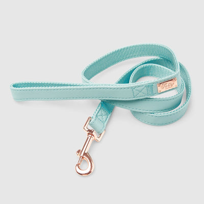 Fetching Ware Capri Lead w/ Rose Gold Lead