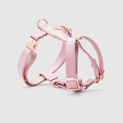 Fetching Ware Rosa in Rose Gold Harness