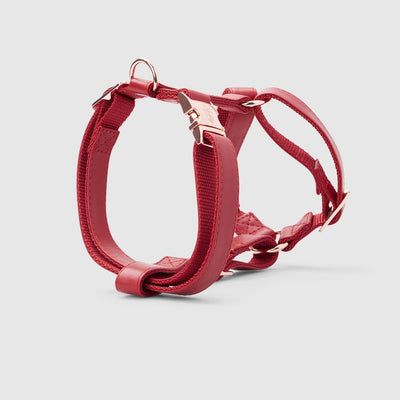 Fetching Ware Tuscany in Rose Gold Harness