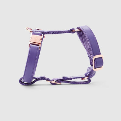 Fetching Ware Valentina in Rose Gold Harness