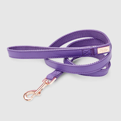 Fetching Ware Valentina Lead w/ Rose Gold Lead