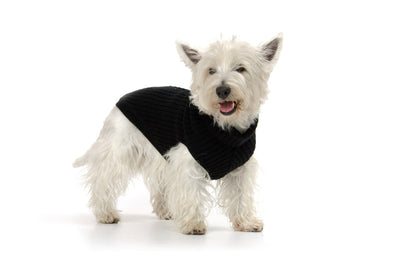 Hamish McBeth Black Mongolian Wool Dog Jumper