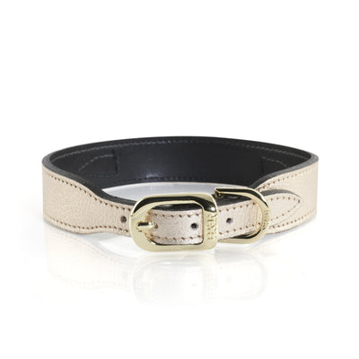 Hartman & Rose After Eight Metallic Gold Italian Leather Dog Collar and Lead