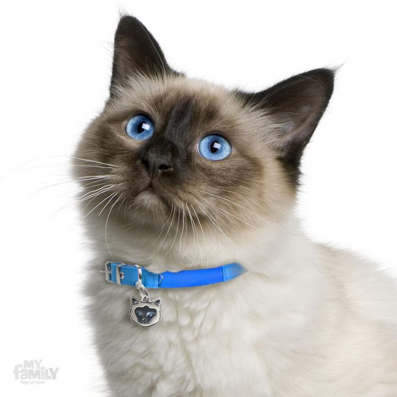 My Family Birman Dog I.D. Tags - 2B